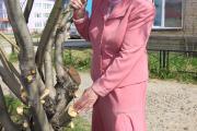 По сей день во всех работах по озеленению Нарьян-Мара  Варвара Михайловна – главный консультант
