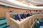 Александр Лутовинов: Нам необходимо готовить инвестпроекты и выходить с предложениями на федеральный уровень / Фото council.gov.ru