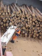 Последние дрова привезли в Каратайку и Нельмин Нос