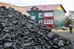 «Севержилкомсервис» доставит уголь и дрова до дома сельчан / Фото Антона Тайбарея