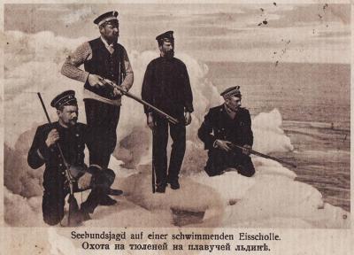 Открытка. Охота на тюленей с плавучей льдины. 1910 год