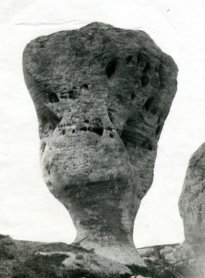 Бокал, 1938 год