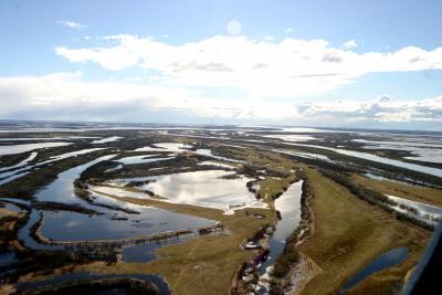 Дельта реки Печоры
