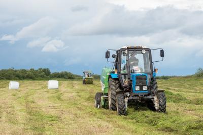 В НАО планируют заготовить почти 8 тысяч тонн кормов  / Фото Антона Тайбарея